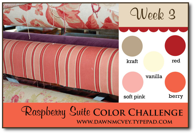 Raspberry-Suite-Color-Challenge-3