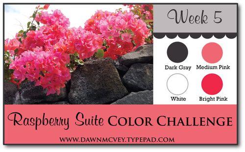 Raspberry-Suite-Color-Challenge---Week-5