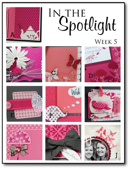 In-the-Spotlight---Week-5