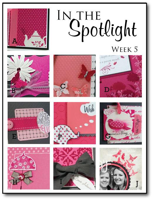 In-the-Spotlight---Week-5