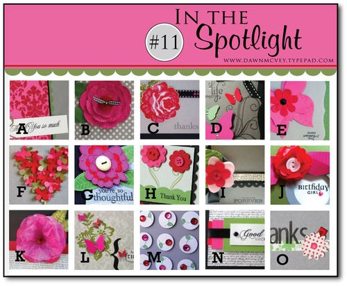 In-the-Spotlight-#11