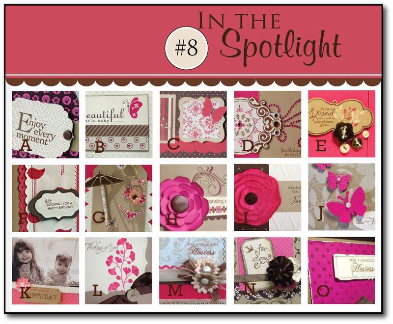 In-the-Spotlight---8