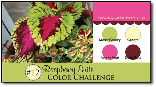 Raspberry-Suite-Color-Challenge-12
