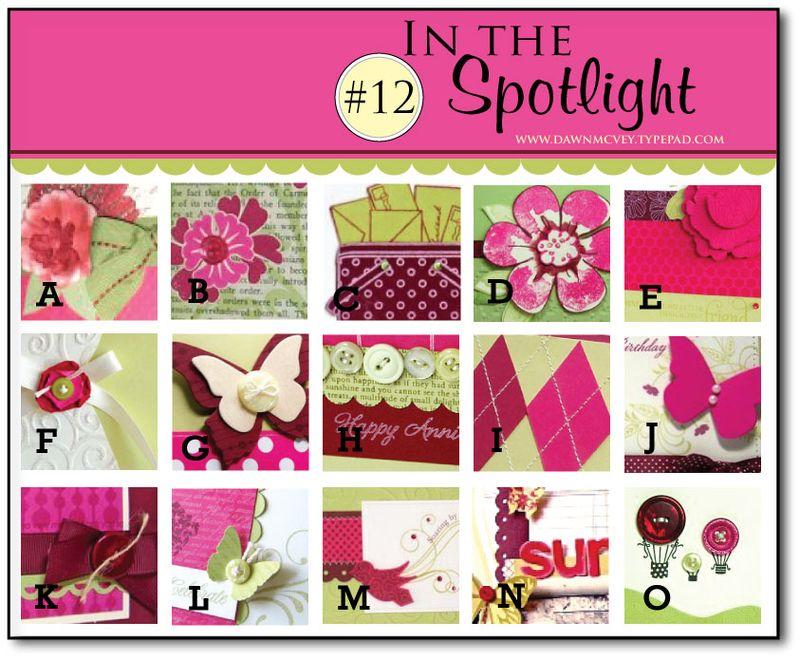 In-the-Spotlight-12