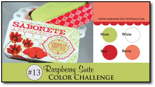 Raspberry-Suite-Color-Challenge-13
