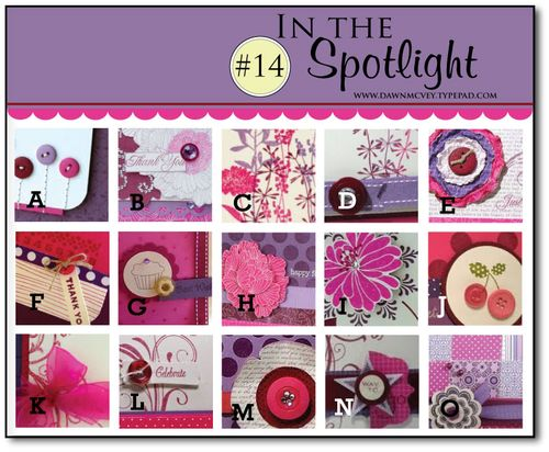 In-the-Spotlight---14