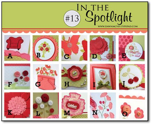 In-the-Spotlight---13