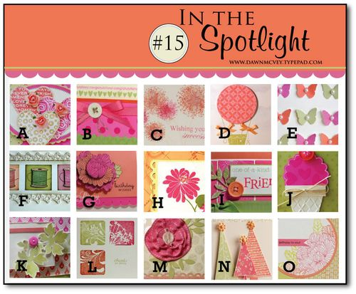 In-the-Spotlight-#15