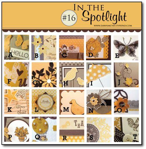 In-the-Spotlight-#16