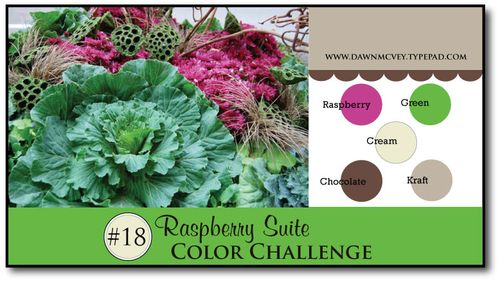 Raspberry-Suite-Color-Challenge-18