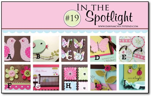 In-the-Spotlight-#19