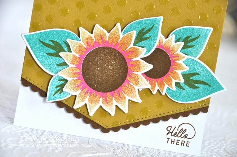 Sunflower Harvest3