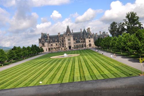 Gorgeous Lawn