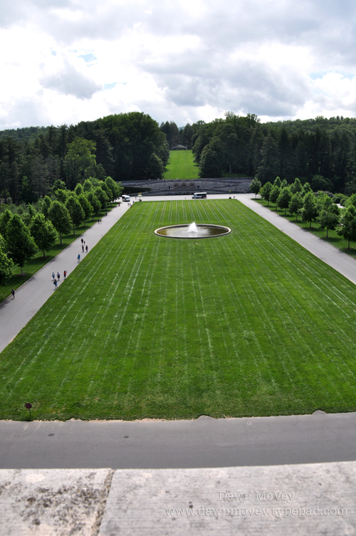 View of Front Lawn, From the Roof!